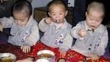 청진시 고앙원 어린이들이 점심을 먹고 있다.