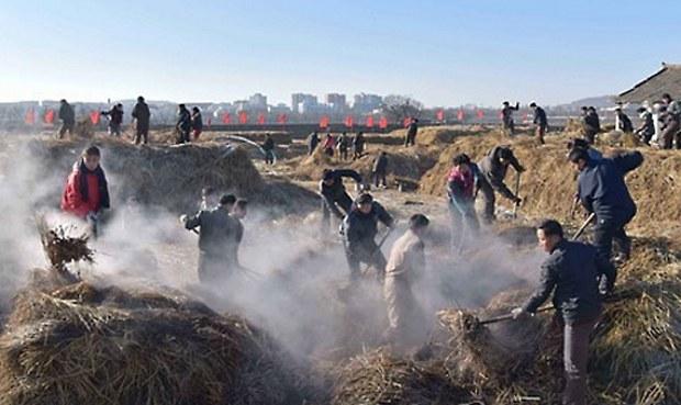 북한의 화성남새온실농장 농업근로자들이 거름을 생산하고 있다.