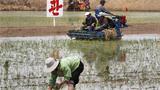 [북한경제, 어제와 오늘] 노력동원 비효율
