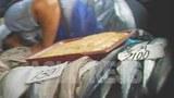 평양 시내 시장의 생선 매장. 가자미, 오징어와 함께 동해안에서만 잡히는 꽁치가 놓여있다.