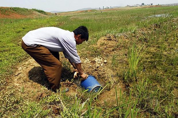 농업개혁 없는 식량 증산은 불가능할 것