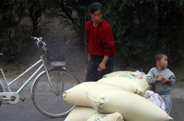 2월 북한 식량가격이 하락한 이유