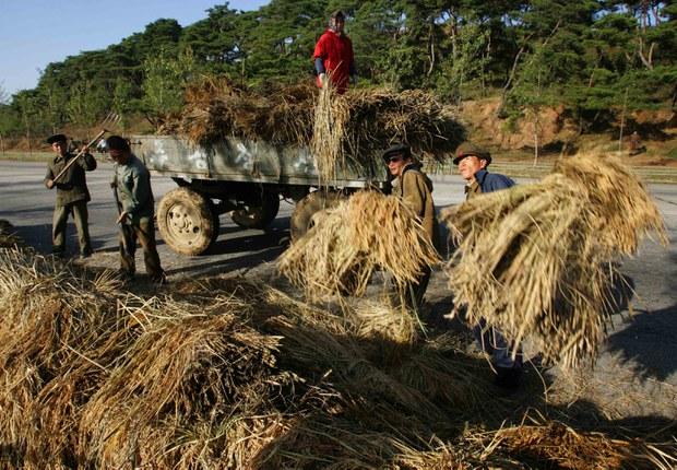 북 쌀 값 상한제 실시하고 곡물 수매 강하게 요구