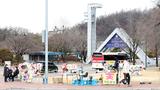 한국 대학 진학률 70%