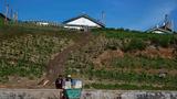 북한 청진 부근의 한 농가의 모습.